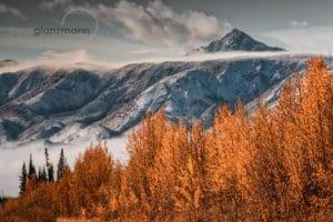 Indian Summer Wander- und Fotoreisen am Kluane National Park im Yukon Kanada