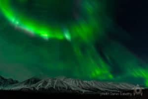 Foto Daniel Sabathy Aurora Borealis Polarlicht Nordlichter Fotoreisen am Kluane National Park im Norden Kanadas.