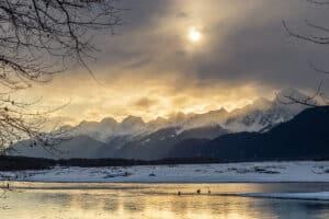 Weisskopfseeadler treffen sich am Lachsflus zu Tausenden in Haines Alaska am Chilkat River. Bald Eagle Festival wird gefeiert hier.