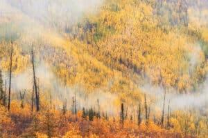 Herbst Landschaftsfotografie Fotoworkshops auf Rundreise mit Kleingruppe