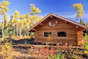 Kluane Blockhütte Herbst Gruppenreisen Unterkunft bei Glanzmann Tours im Yukon. Ferien im selbstgebauten Gästehaus in der Wildnis