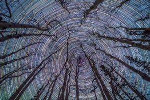 Nacht-Sternfoto, alle Sterne kreisen, um den Polarstern. Startrail Kreis Astrofotografie am Nordhimmel im Yukon ohne Lichtsmog