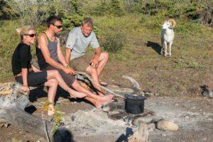 Am LagerfeuerWildnis erleben auf geführten Gruppenreisen und wilde Tiere Dallschafe aus der Nähe beobachte im Yukon auf Flussreisen unterwegs