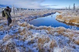 Landscape and Wildlife Photography Tours Yukon with professional Photographer